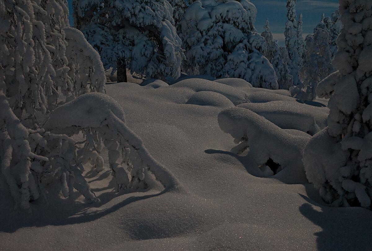 Ilta, kimmeltävä hanki ja lumiset puut.