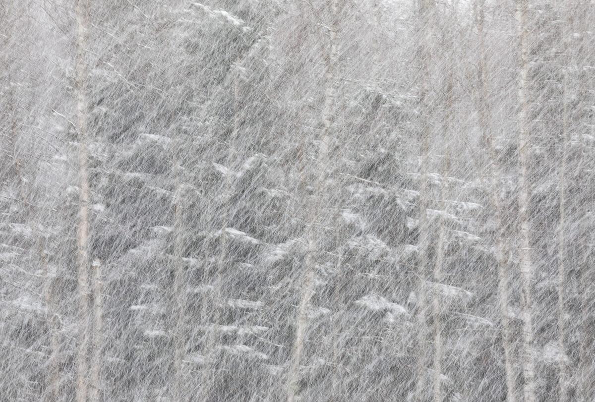Lumisade.